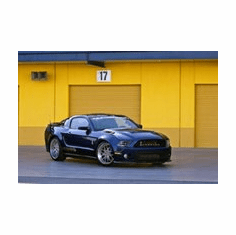 Shelby Mustang 1000 Mini poster 11inx17in