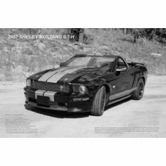 """Shelby Mustang Gt H Black and White Poster 24""""x36"""""""