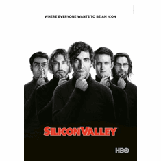 Silicon Valley Poster 24in x36in