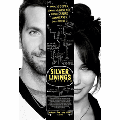 Silver Linings Playbook Movie Poster 24inx36in Poster