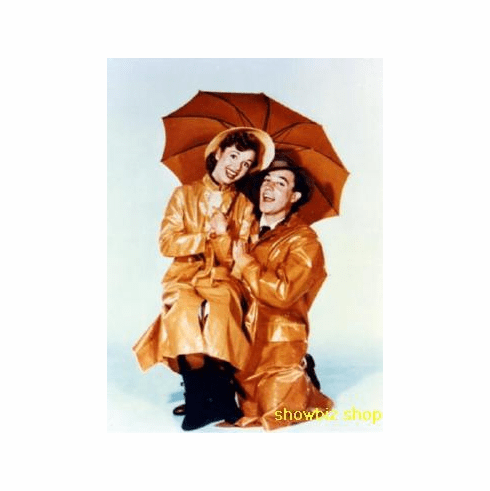 Singing In The Rain Art Poster 24inx36in