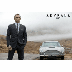 Skyfall Mini Movie Poster 11X17
