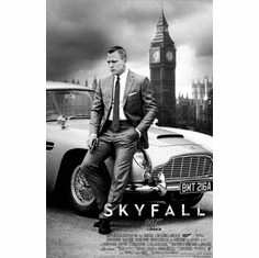 Skyfall Movie Poster 24Inx36In Poster