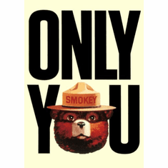 Smokey Bear Poster Only You Can Prevent Forest Fires 24inx36in