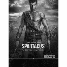 "Spartacus Blood And Sand Black and White Poster 24""x36"""