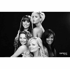 """Spice Girls Black and White Poster 24""""x36"""""""