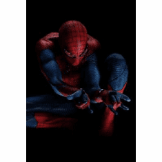 Spiderman Poster 24inx36in