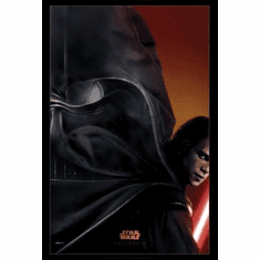 Star Wars Ep Iii Movie Poster 24inx36in