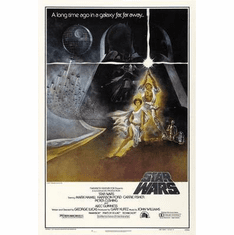 Star Wars Movie Poster 24in x36 in