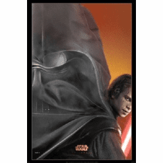 Star Wars Sith Poster 24inx36in