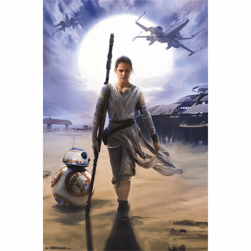 Star Wars The Force Awakens Movie Poster Rey and Droids 22x34