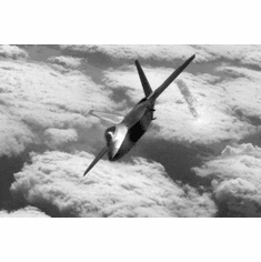 """Stealth Fighter Black and White Poster 24""""x36"""""""