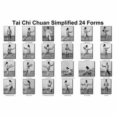 "Tai Chi Chuan 24 Forms Black and White Poster 24""x36"""