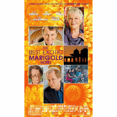 The Best Exotic Marigold Hotel 11inx17in Mini Movie Poster