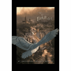 The Wizarding World Of Harry Potter Theme Park Poster 24inx36in