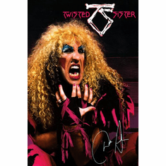 Twisted Sister Poster 24x36