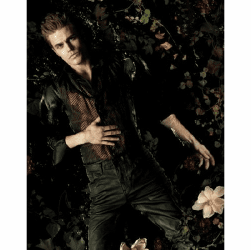Vampire Diaries Paul Wesley Poster 24inx36in