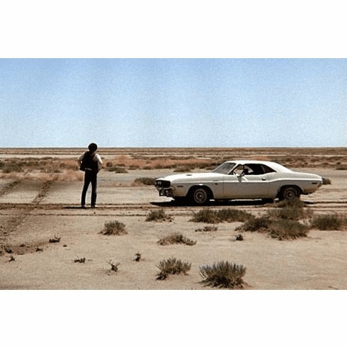 Vanishing Point Movie Poster 24in x36in