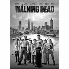 "Walking Dead Black and White Poster 24""x36"""