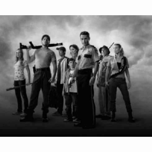 """Walking Dead Black and White Poster 24""""x36"""""""