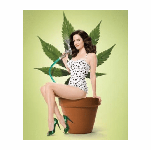 Weeds 11inx17in Mini Poster #01 Mary Louis Parker