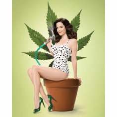 Weeds Poster Mary Louis Parker 24inx36in