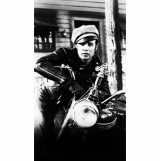 Wild One Movie Poster 24in x36in