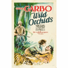 Wild Orchids Poster 24inx36in