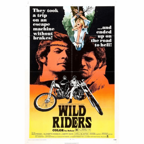 Wild Riders Movie Poster 24inx36in Poster