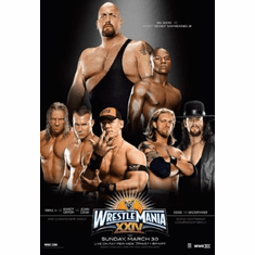 Wrestlemania Xxiv 24 8x10 photo master print