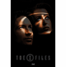 X-Files The Poster 24in x36in