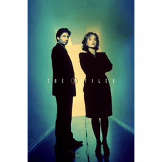 X-Files The Poster 24inx36in
