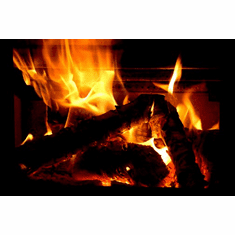 Yule Log Christmas Holiday Poster 24inx36in Poster