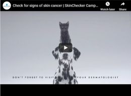 Check for signs of skin cancer