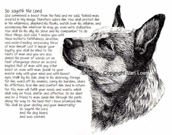 "Australian Cattle Dog ""So Sayeth"" Limited Edition Print"