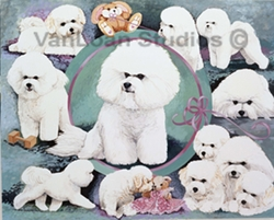 Bichon Frise Club of Greater New York