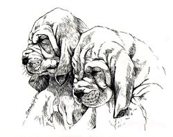 "Bloodhound ""Babies"" Limited Edition Print"