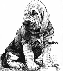 "Bloodhound ""Puppy Sit and Stay"" Limited Edition Print"