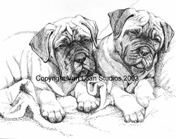 "Bullmastiff ""Puppies"""