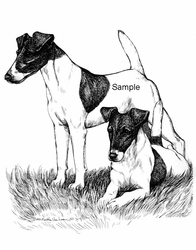 "Fox Terrier Smooth ""Friendly Pair"""