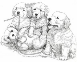 "Golden Retriever ""Puppies and Teddy"""