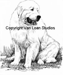 "Great Pyrenees ""Sitting"""