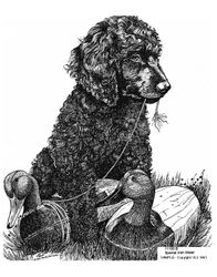 "Irish Water Spaniel ""Puppy with Duck Decoy"""