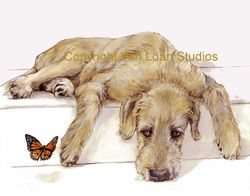 Irish Wolfhound and Butterfly Limited Edition Print