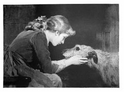 "10/1/2018 Irish Wolfhound Deerhound ""Vintage Engraving Repro"""