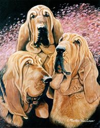 Bloodhound Trio