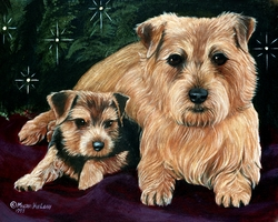 "Norfolk Terrier ""Under The Tree"""