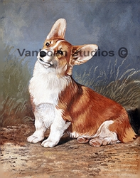"Pembroke Welsh Corgi  ""Sitting Pretty"""