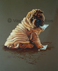 "Shar Pei ""I Can Change a Twenty"""