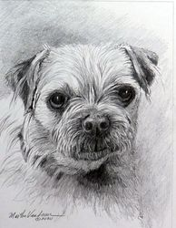small custom pencil drawing of your dog